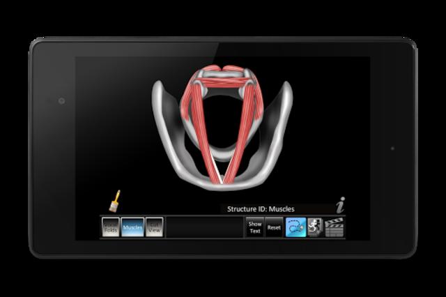 Vocal Folds ID screenshot 13