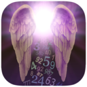 Icon for Angel Number Signs