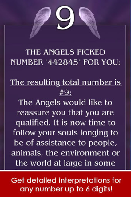 Angel Number Signs screenshot 3