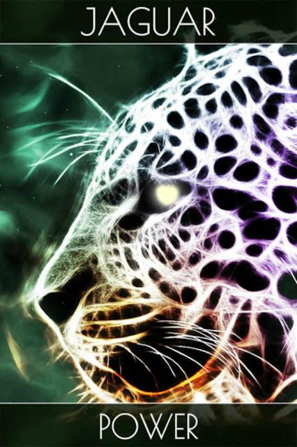Spirit Animal Oracle Cards screenshot 2