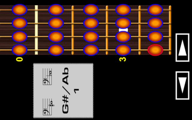 Bass Guitar Notes PRO screenshot 2