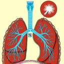 Icon for Learn Medical Terminology