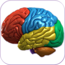 Icon for 3D Human Brain
