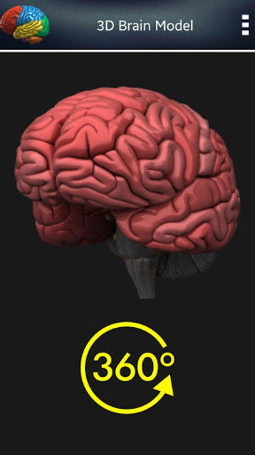 3D Human Brain screenshot 2