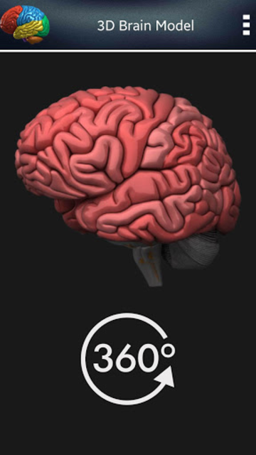3D Human Brain screenshot 3