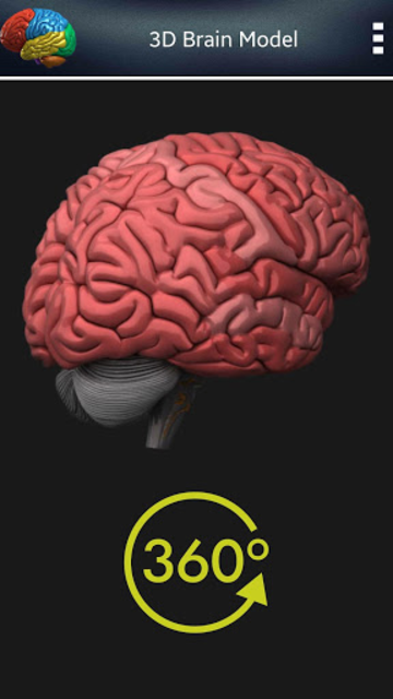 3D Human Brain screenshot 6