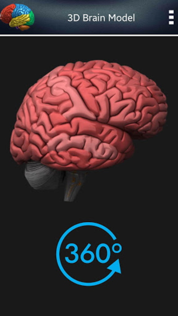 3D Human Brain screenshot 7