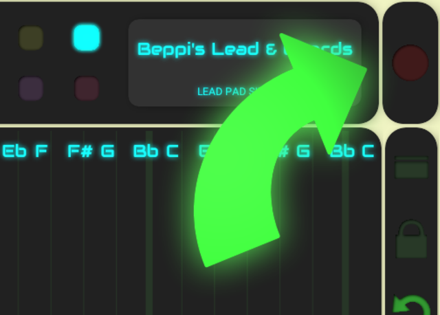 QiBrd REC Module - Recording in QiBrd screenshot 2