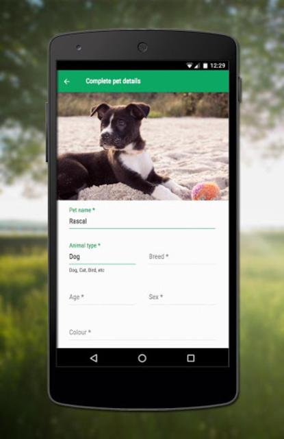 Runaway Pets screenshot 4