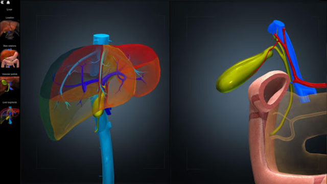 Anatomy Learning - 3D Atlas screenshot 4