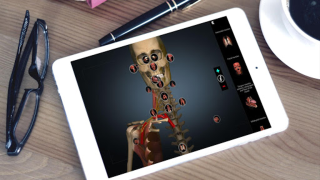 Anatomy Learning - 3D Atlas screenshot 6