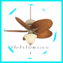Icon for Ceiling Fan With Lighting