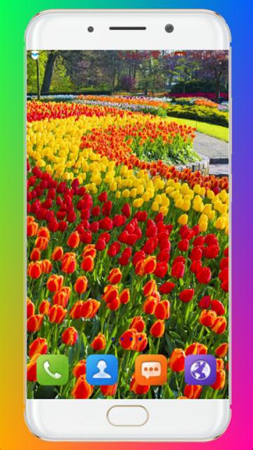 Garden Wallpaper screenshot 16