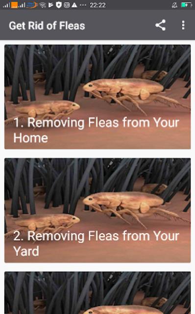 Get Rid of Fleas screenshot 1