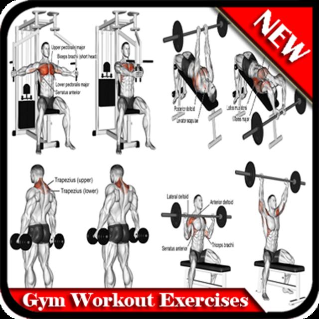 Gym Workout Exercises screenshot 9