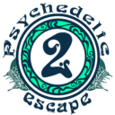 Icon for Psychedelic Escape 2: Play with Neons