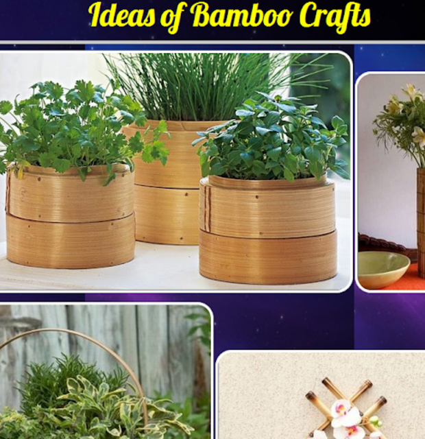 About Ideas Of Bamboo Crafts Google Play Version Ideas Of