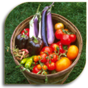 Icon for Vegetable Gardening