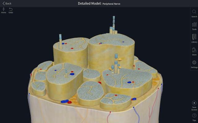 Complete Anatomy Platform 2020 screenshot 14