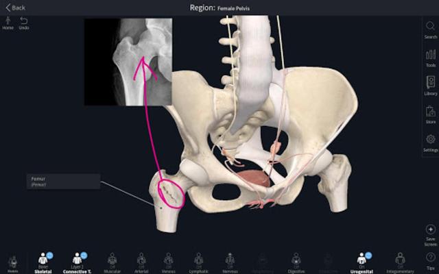 Complete Anatomy Platform 2020 screenshot 15