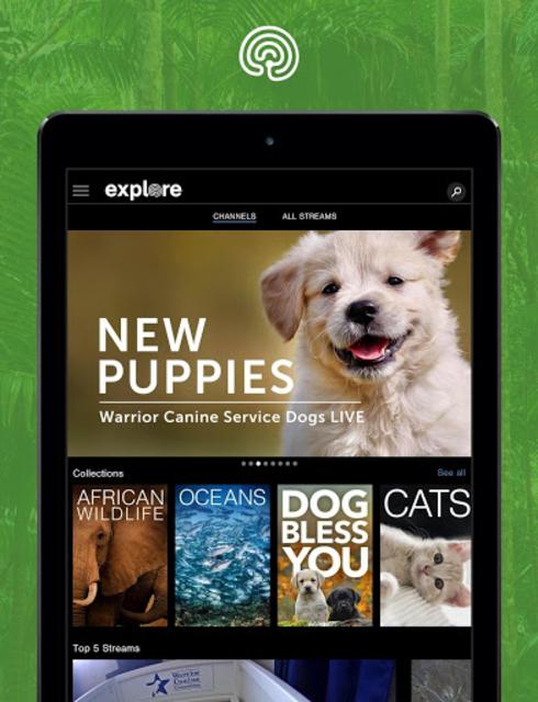 explore.org screenshot 9