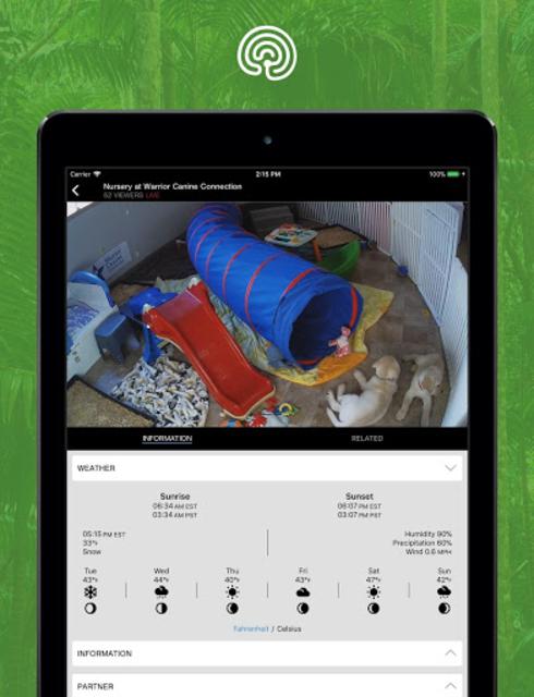 explore.org screenshot 11