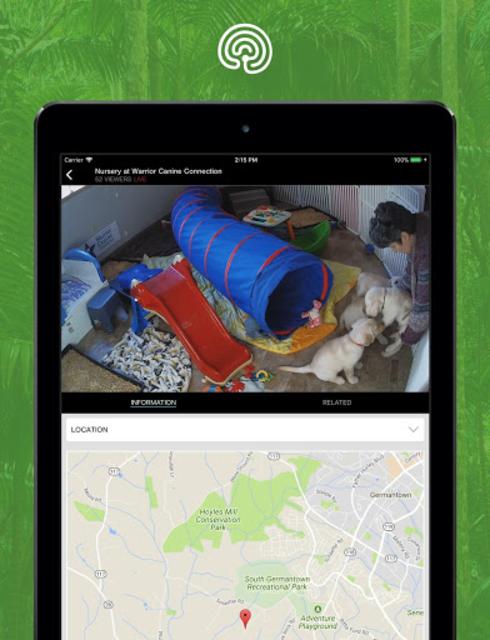explore.org screenshot 12