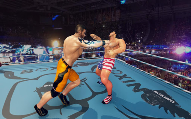 Royal Wrestling Cage: Sumo Fighting Game screenshot 2