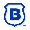 Icon for Brinks Home Security