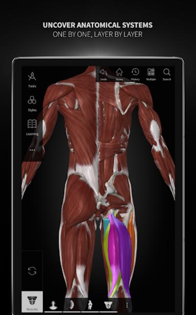Anatomyka - 3D Human Anatomy Atlas screenshot 14