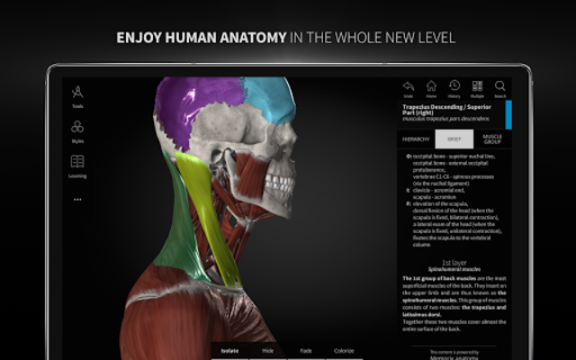 Anatomyka - 3D Human Anatomy Atlas screenshot 19