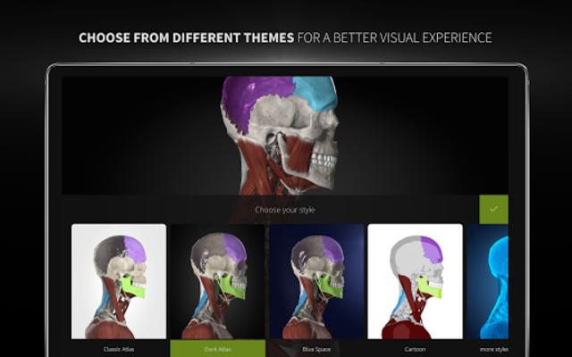 Anatomyka - 3D Human Anatomy Atlas screenshot 23