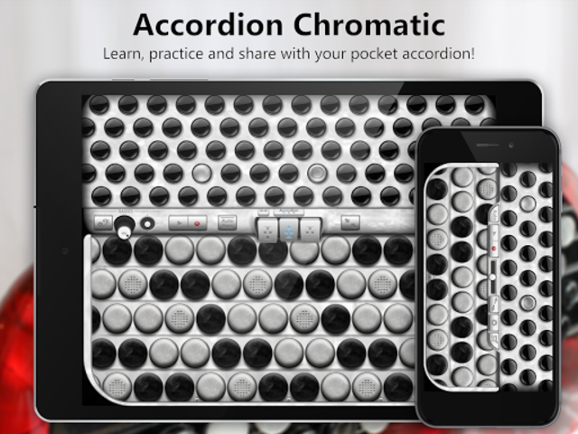Accordion Chromatic Button screenshot 1