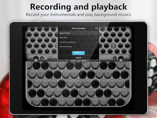 Accordion Chromatic Button screenshot 9