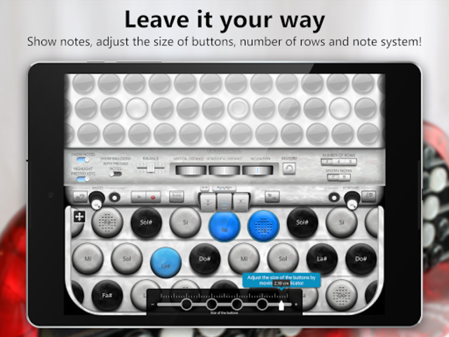 Accordion Chromatic Button screenshot 11