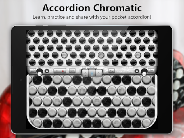 Accordion Chromatic Button screenshot 13