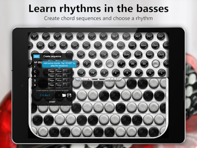 Accordion Chromatic Button screenshot 16