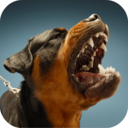 Icon for Dog Sounds