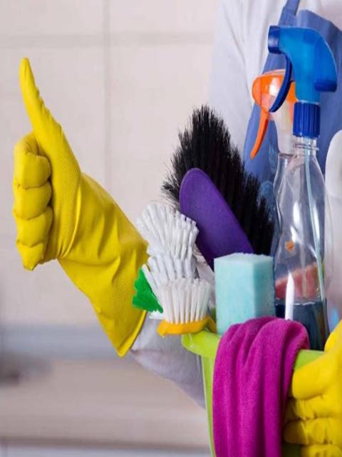 House Cleaning screenshot 9