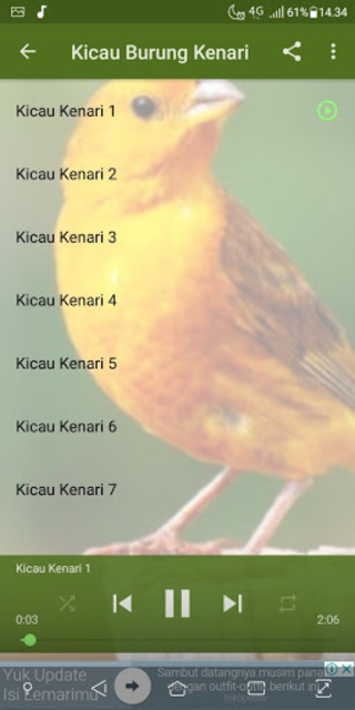 About Kicau Burung Kenari Google Play Version Kicau Burung Kenari Google Play Apptopia