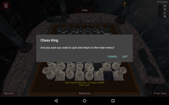 Chess King screenshot 8