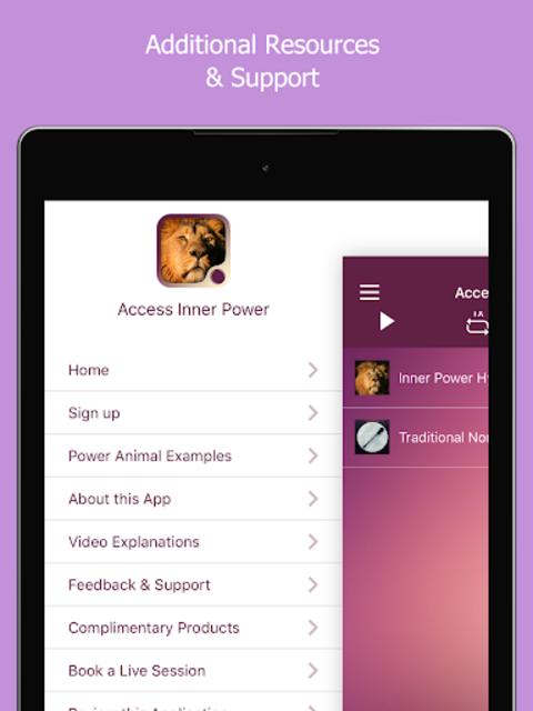 Access Inner Power screenshot 9