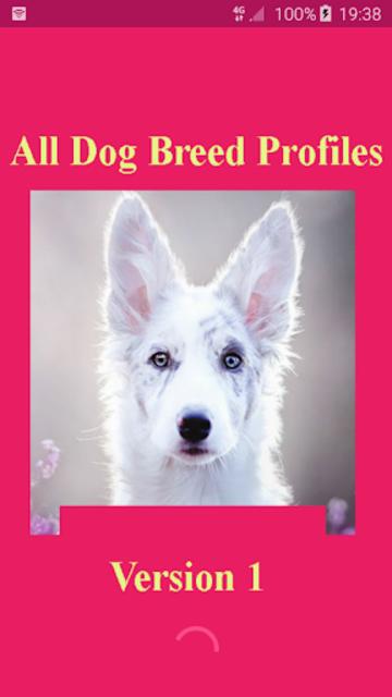 All Dog Breed Profiles screenshot 3
