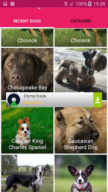 All Dog Breed Profiles screenshot 4