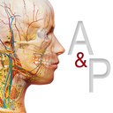 Icon for Anatomy & Physiology