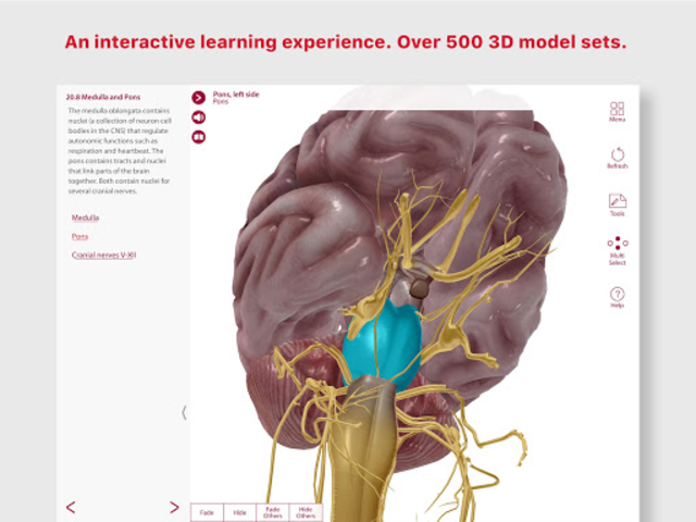 Anatomy & Physiology screenshot 7
