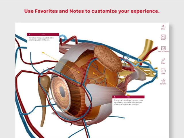 Anatomy & Physiology screenshot 15