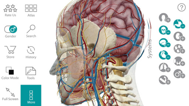 Human Anatomy Atlas screenshot 2