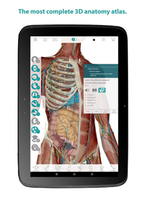 Human Anatomy Atlas screenshot 6