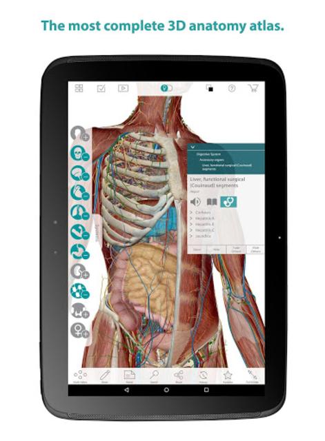 Human Anatomy Atlas screenshot 11